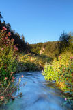 Paradise Vale. Stream in the Bavarian Countryside Royalty Free Stock Images
