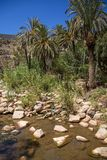 Paradise Valley in Morocco Royalty Free Stock Photo