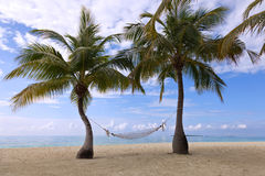 In Paradise. View from the beach of the island of the Indian Ocean Royalty Free Stock Photography