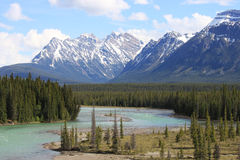 Paradise view onto the Rocky Mountains Stock Images