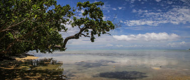 Paradise water and beach panorama, Île aux Nattes, Toamasina, Madagascar Royalty Free Stock Image