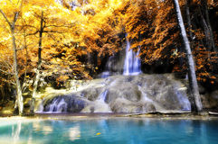 Paradise Water fall Stock Images