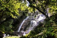 Paradise waterfall Royalty Free Stock Photos