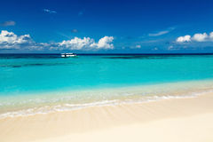 Paradise wild beach on the Caribbean Stock Images