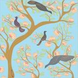 Paradisfåglar på filialerna av ett blomningträd i trädgården royaltyfria bilder