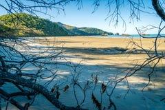 Paradisiac beach in Cape Hillsborough national park, Queensland, Australia royalty free stock photos