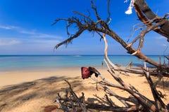 Paradisiac beach in Phuket Royalty Free Stock Photography