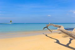 Paradisiac beach in Phuket Royalty Free Stock Photo