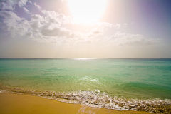 Paradisiac weißer Sandstrand Stockbild