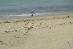 Paradisiacal пляжи Malibu на пасмурный день Ландшафт природы спорта Стоковая Фотография