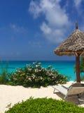 Paradisiacal plaże Zanzibar fotografia royalty free