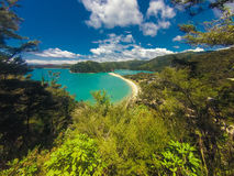 Paradisisk strand i Abel Tasman i Nya Zeeland Arkivfoto