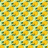 Paradiso arancione Fotografia Stock