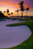 Paradiso del giocatore di golf Fotografie Stock Libere da Diritti