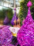 Paradiso 2014 dell'orchidea di Bangkok del modello del Siam Immagine Stock Libera da Diritti