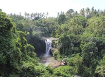 Paradiso della cascata Fotografie Stock Libere da Diritti