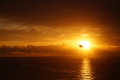 Paradiso di mattina Fotografie Stock