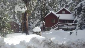 Paradiso di Snowy fotografia stock