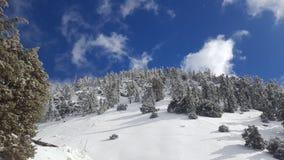 Paradiso di Snowy fotografie stock libere da diritti