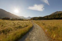 Paradiso, Glenorchy, Nuova Zelanda Fotografie Stock Libere da Diritti
