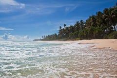 Paradiso - spiaggia tropicale, Sri Lanka Fotografie Stock