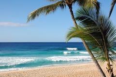 Paradiso tropicale Fotografia Stock