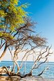 Paradiso tropicale dell'isola Fotografie Stock