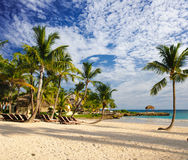 Paradiso tropicale. Repubblica dominicana, Seychelles, i Caraibi, Mauritius, Filippine, Bahamas. Rilassandosi sulla spiaggia a dis Fotografie Stock