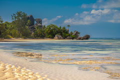 Paradisstrand av Seychellerna Arkivbild