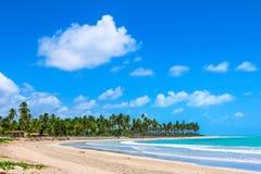 Paradisstrand, med blå himmel Royaltyfria Bilder