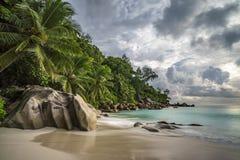 Paradisstrand på ansegeorgette, praslin, Seychellerna 10 Royaltyfria Foton
