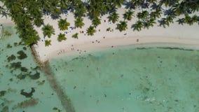 Paradisstrand på tropiska öar Saona ö, Dominikanska republiken Bästa surrsikt lager videofilmer