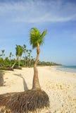 Paradiziacas beaches Royalty Free Stock Photography