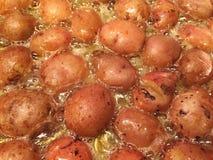 Paradoxo francês: Batatas novas que fritam na gordura do pato, um prato simples mas delicioso do bebê de França ocidental sul fotos de stock royalty free