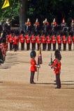 parady urodzinowa królowa s Zdjęcie Royalty Free