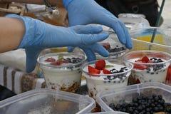 Paraffin muesli mit Jogurt und Frucht Stockfotografie