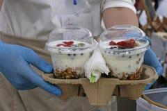 Paraffin muesli mit Jogurt und Frucht Lizenzfreies Stockfoto