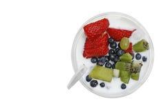 Paraffin muesli mit Jogurt und Frucht Lizenzfreie Stockbilder