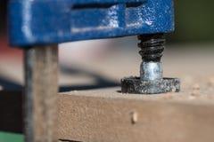 Parafuse a braçadeira, close-up foto de stock