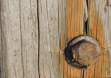 Parafuso de oxidação Foto de Stock Royalty Free