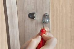 Parafuso de suporte da mobília da fixação usando a chave de fenda do crosshead Imagens de Stock Royalty Free