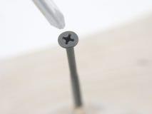 Parafuso e chave de fenda Imagem de Stock