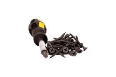 Parafuso e chave de fenda pretos Imagem de Stock