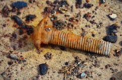 Parafuso oxidado na areia fotografia de stock royalty free