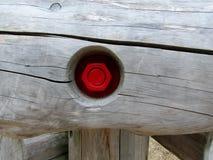 Parafuso vermelho no log de madeira fotografia de stock royalty free