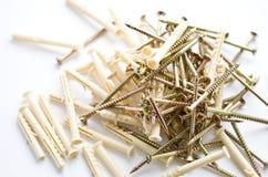 Parafusos com passadores plásticos Fotografia de Stock
