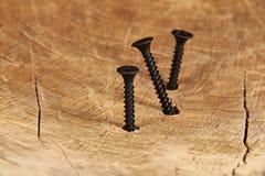 Parafusos de madeira Fotografia de Stock Royalty Free