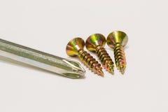 Parafusos de madeira e macro interno da chave de fenda Fotografia de Stock Royalty Free