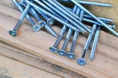 Parafusos de prata. Imagens de Stock Royalty Free