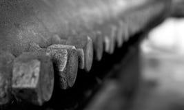 Parafusos oxidados Fotos de Stock
